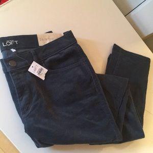 Anne Taylor LOFT Brand New Size 8 Corduroy Pants.